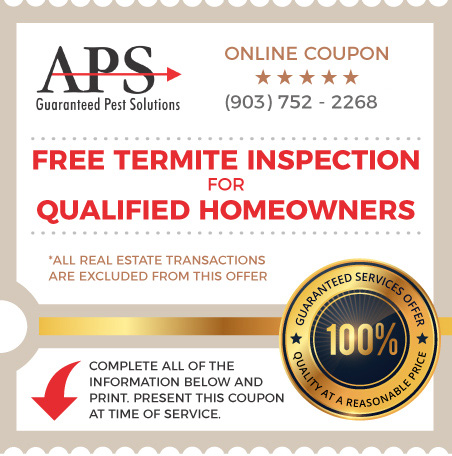 Coupon: Free Termite Inspection