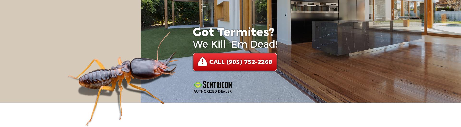 Got Termites? We Kill 'em Dead