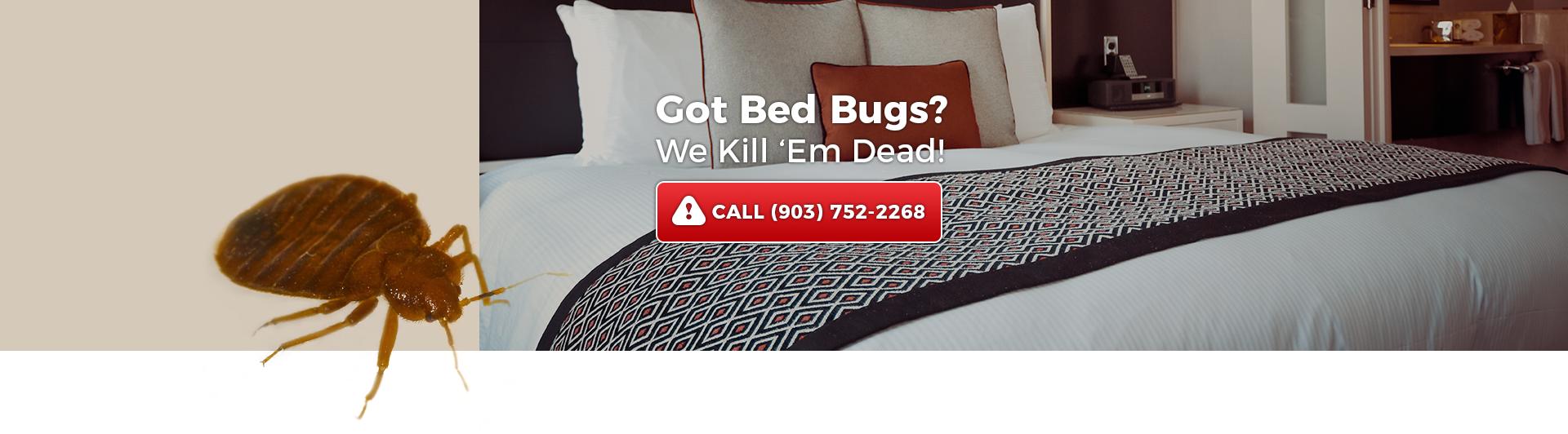 Got Bed Bugs? We Kill 'em Dead